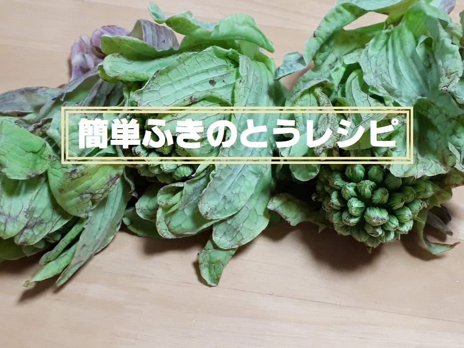 子どももOK!ふきのとう味噌プラス豚ひき肉の簡単レシピ