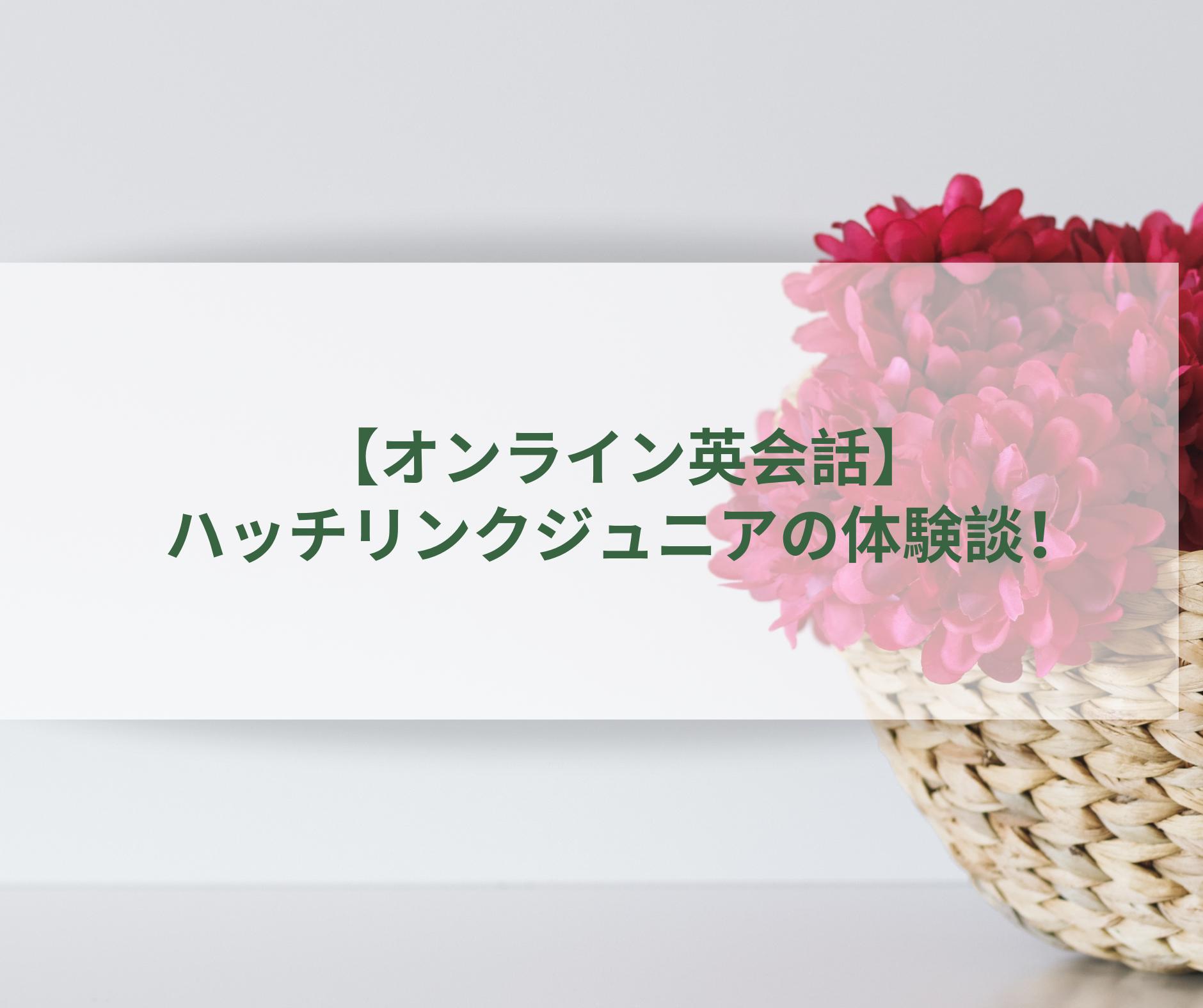 【オンライン英会話】ハッチリンクジュニアの体験談!兄弟同時受講可能!