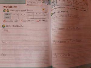 Z会小学生コース英語ライティング